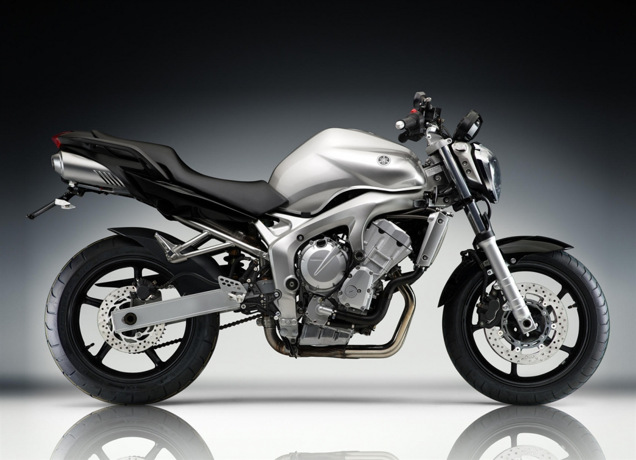 Picture for category FZ6 (2004-2007)
